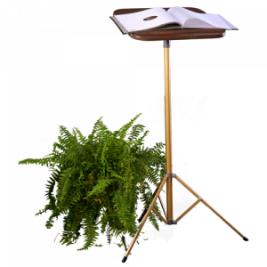 Fixed Pedestal Lectern Value Bundle